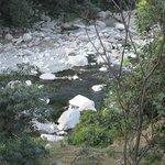 Ravi river view from jamwal villa