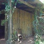 Rainforest Shangri-La Resort Foto
