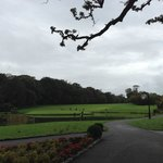 The 9th Hole at the Deerpark Course - Fota Island