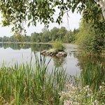 vue d'une partie du lac