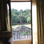 on 2nd floor open window to view