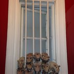 Their perfectly clean bathroom had these stuffed animal rats in the window - hilarious and cleve