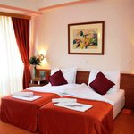 Drim Hotel room