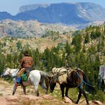 Views of the Beartooth Mountains while horseback riding with Vic Jackson