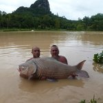 A world record carp