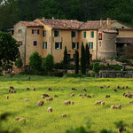Photo of Une Campagne en Provence