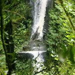 Waterfall in the Resere Monteverde