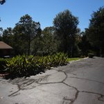 Plya area and garden