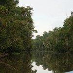 Deeper down river