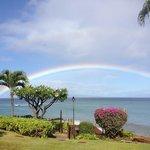 Rainbows abound