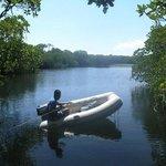 Lagune auf Apo Iland