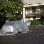 Cars in parking lot covered with plastic to prevent damage.