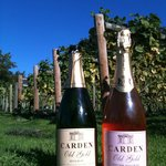 Carden Old Gold sparkling wine produced from onsite vineyard