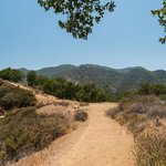 Trail in the Santa Monica Mtns