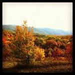 beautiful fall colors on the way up to Buckeye ridge