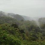 Dreamy, misty landscape.