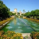 les magnifiques jardins de l'Alcazar