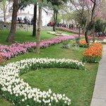 Эмирган парк в апреле! Красотища! :-)