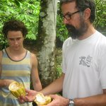 Henry shows us a ripe Cacao fruit