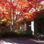 Whistler Cascade Lodge Hotel