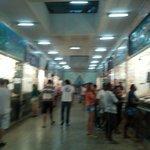 mercado onde são vendidos os peixes