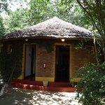 Un des nombreux bungalows