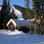 Bluebird Day Sunburst Chair