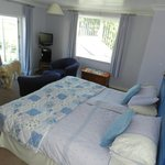 Large bedroom, we had four large dogs sleep on the floor and there was still masses of room!