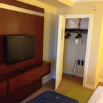 Bedroom closet and tv