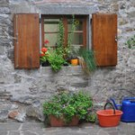A stone wall, plants and buckets - simple but attractive.