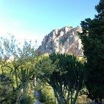 Blick durch den Garten auf den Hausberg von Cefalu