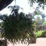 jardines internos