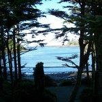 Terrace Beach