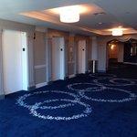 Nice hallway carpeting