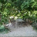 Grape vines covering a dining area
