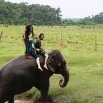Elephant Rides... with one of the kindest elephant drivers out there! He stays with her at the h