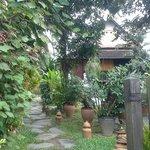 Entrée par le jardin...