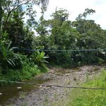 Camino de la comunidad indígena