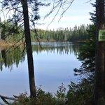 Promenade au lac Biscuit