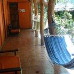 Foto de Mi Casa Hostel El Tesoro