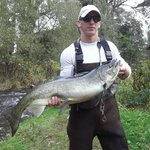 King Salmon caught on Maxwell Creek in SOdus NY