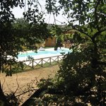 La piscina immersa nel verde della campagna Toscana
