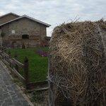"""Agriturismo """"il Borgo"""""""