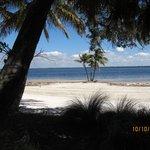 Beach thru the trees