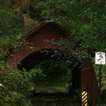 Yachats Covered Bridge