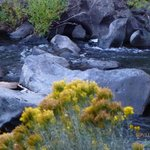 Deschutes River from outdoor dining/similar view from room