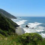 We were surprised to find a beach near the Redwoods!