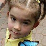 Butterfly Friend