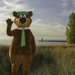 Yogi Bear on the beach