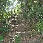 some of the steps to Hodges Beach